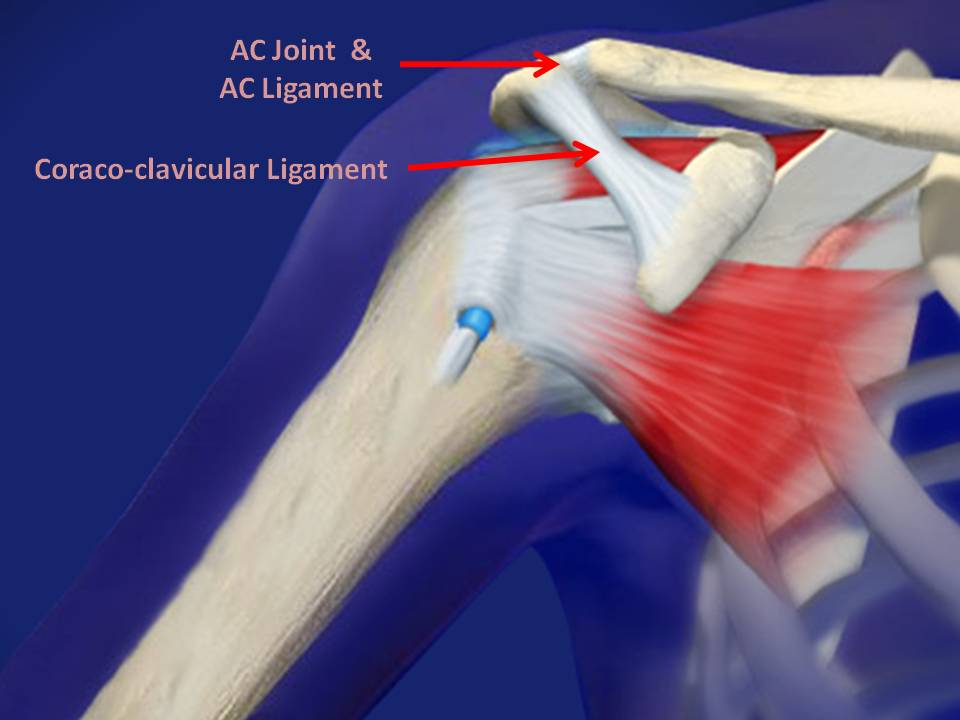 AC_Joint